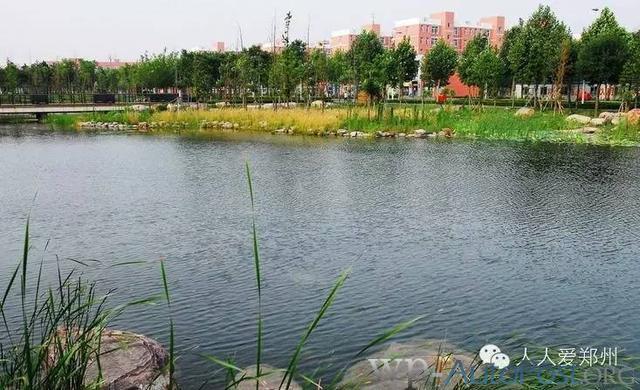 郑州国立西郊公园 去过都说美!