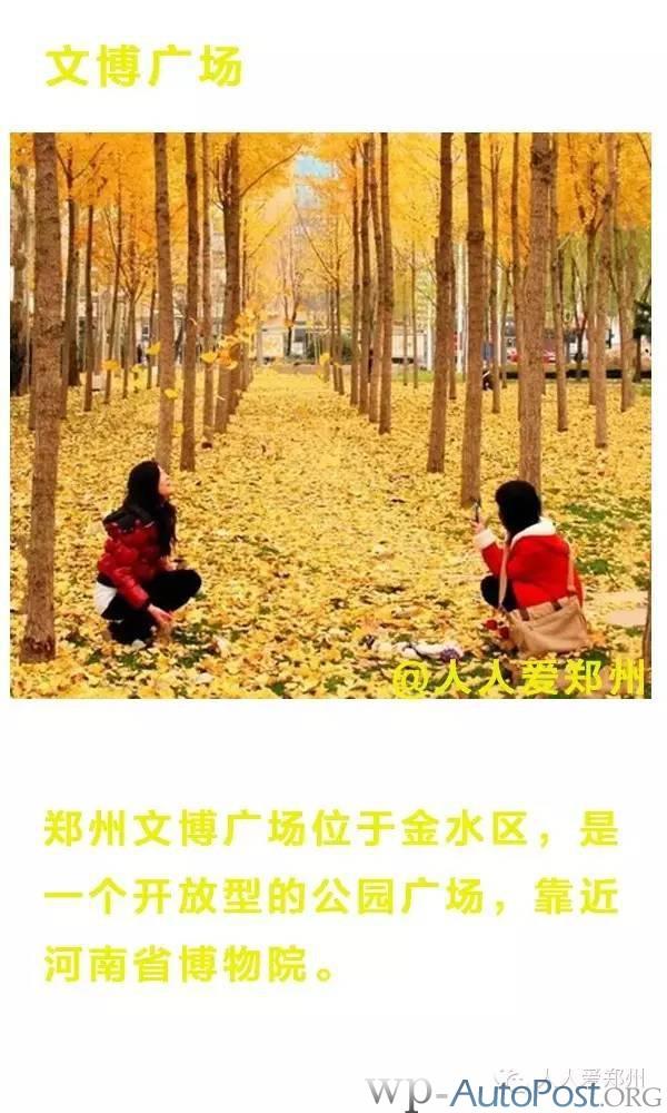 精选!郑州秋日极美的6个免费游玩好去处