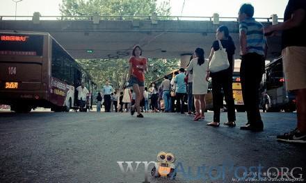 赞!郑州最有秩序的公交车站