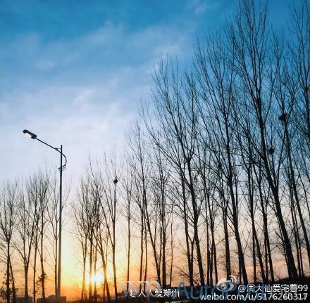 随手拍丨昨日郑州黄河边的风景